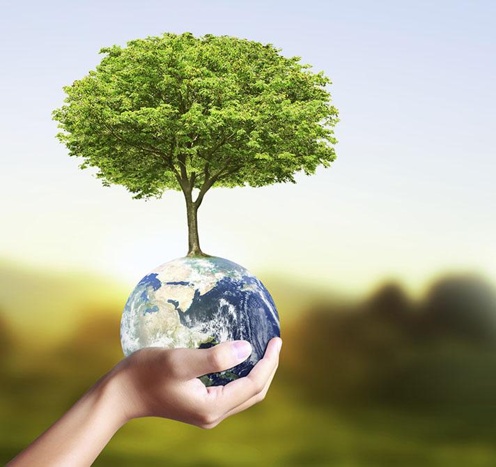 C mo se puede cuidar del medio ambiente en verano - Como humidificar el ambiente ...