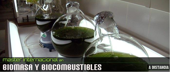Máster Internacional en Biomasa y Combustibles