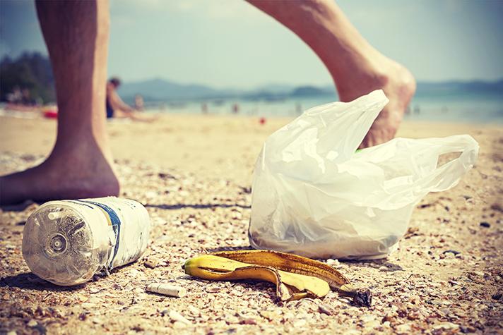Se han organizado jornadas de retirada y eliminación de basuras