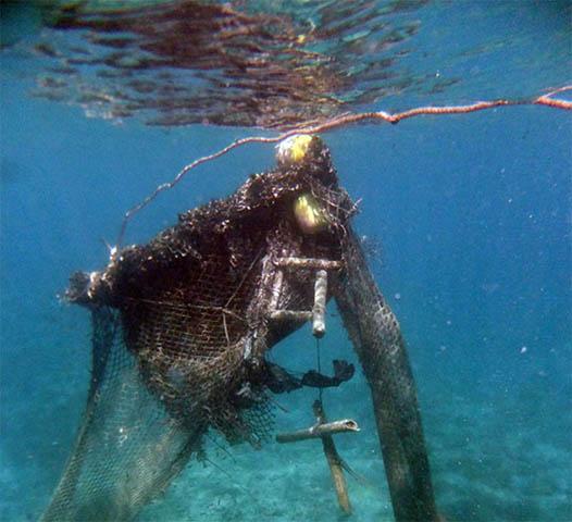 OPAGAC ha firmado un acuerdo con la Seychelles Fishing Authority, la Island Conservation Society y la Island Development Company