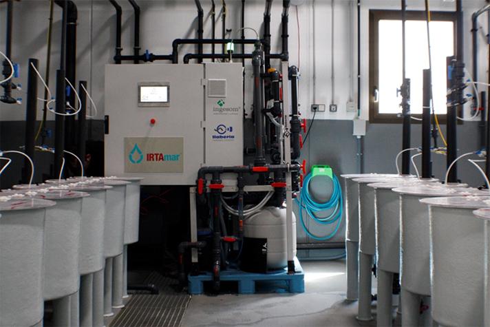 IRTAmar automatiza el control del bienestar de los animales en cualquier tipo de explotación acuícola