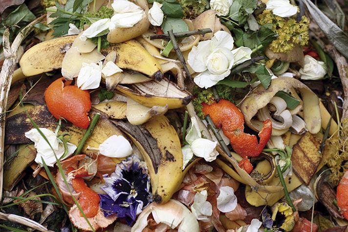Los residuos orgánicos en la 4ª Revolución Industrial