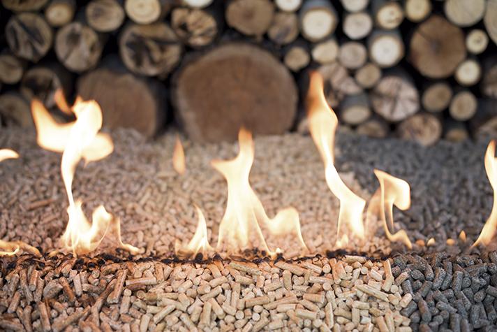 La biomasa, un fenómeno  imparable en Europa y en España