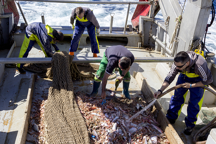 El proyecto RepescaPlas continuará buscando una nueva vida a los residuos recuperados del mar