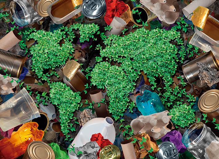 El digestato de fracción orgánica de residuos municipales presenta potencial como sustrato para fermentaciones en estado sólido