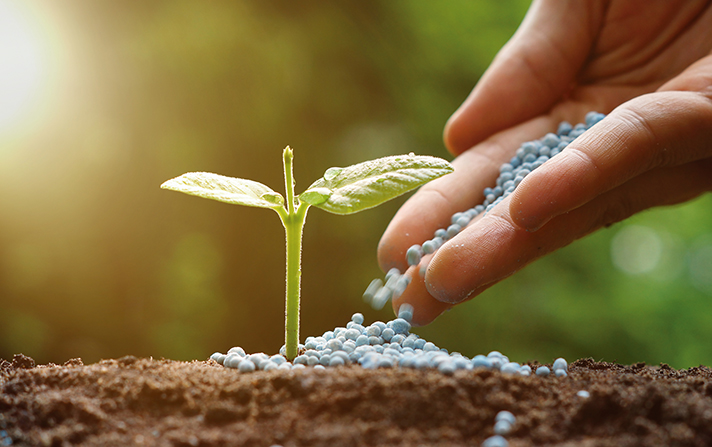 Reglamento europeo de fertilizantes vs las actuales regulaciones en Europa y en España