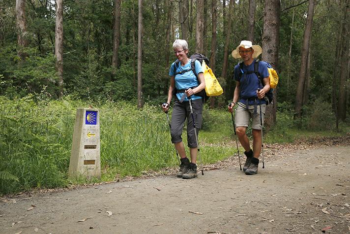 Se han repartido más de 140.000 bolsas reutilizables entre los caminantes para evitar la basuraleza a lo largo del Camino