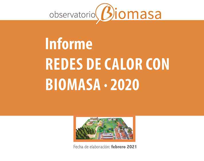 "informe ""Redes de calor con biomasa · 2020"" de AVEBIOM"
