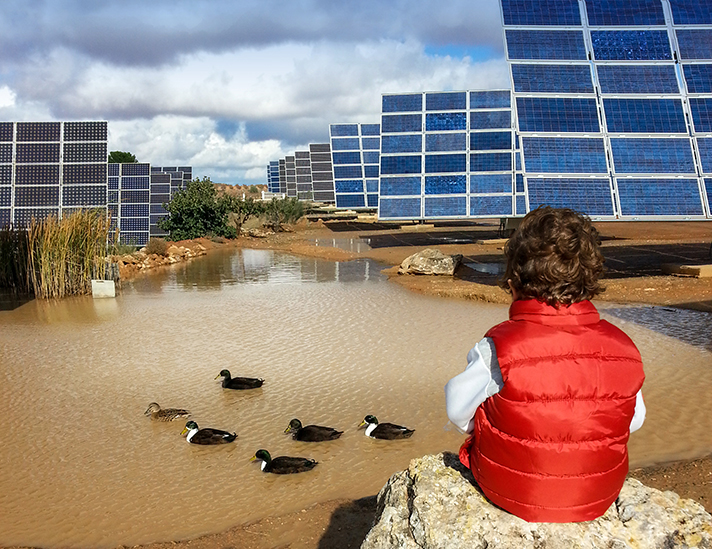 El VIII Foro Solar deja de manifiesto que la fotovoltaica es la forma más barata y sostenible de rebajar el precio de la luz