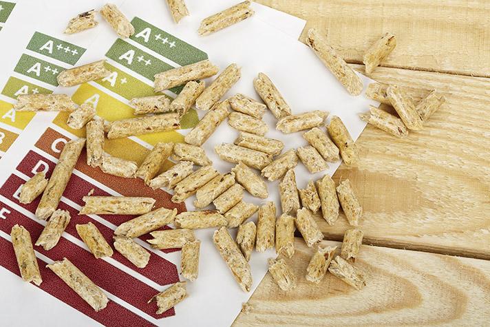 La contribución de los distintos tipos de biomasa al mix energético