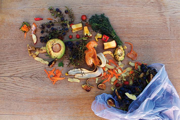 Solo en Europa, se estima que las pérdidas y el desperdicio de alimentos alcanzan aproximadamente 89 millones de toneladas por año