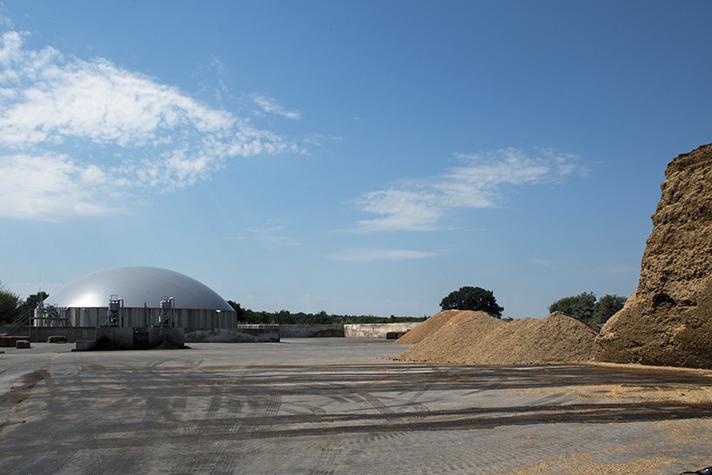 Una alternativa prometedora es el desarrollo del biogás como fuente de energía renovable