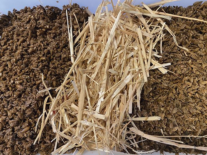 El compostaje y la digestión anaerobia se han utilizado como tecnologías para la valorización material y energética de estos residuos