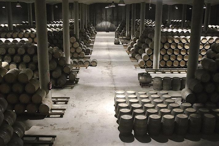 El sector vitivinícola no es ajeno a las exigencias de reducción del consumo energético que la Unión Europea exige a los edificios