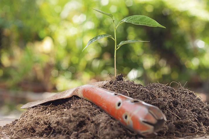 La sociedad actual apuesta por la sostenibilidad y el respeto al entorno natural