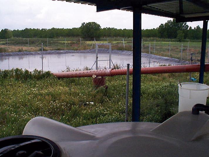 Tratamiento de efluentes y producción de fertilizantes  mediante el cultivo heterótrofo de microalgas